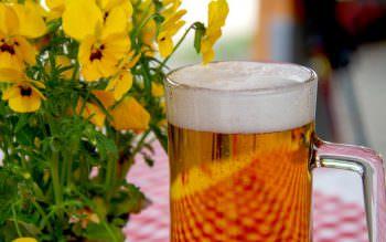 Anmeldung – Ferientreffen im Biergarten