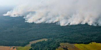 Anmeldung – Klimawandel: Herausforderungen für den Brandschutz