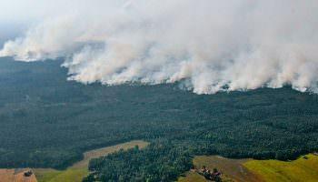 Klimawandel: Herausforderungen für den Brandschutz in Niedersachsen